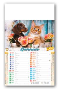 28,8 x 47 Cani e Gatti