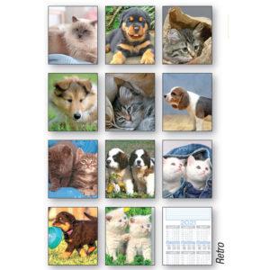 Calendario olandese figurato cuccioli 163